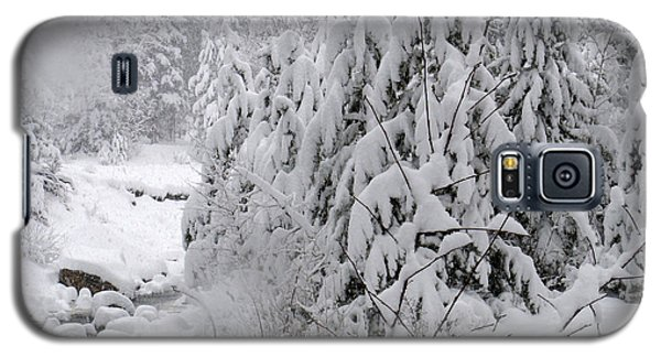 Galaxy S5 Case featuring the photograph Estes Park After The Blizzard by Kate Purdy