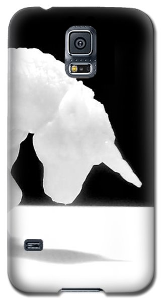 Galaxy S5 Case featuring the photograph Eternelle Petite Licorne by Marc Philippe Joly
