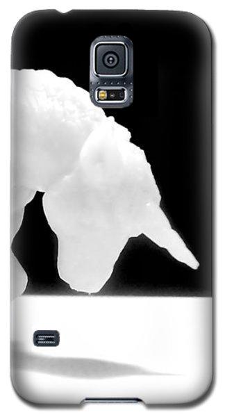 Eternelle Petite Licorne Galaxy S5 Case