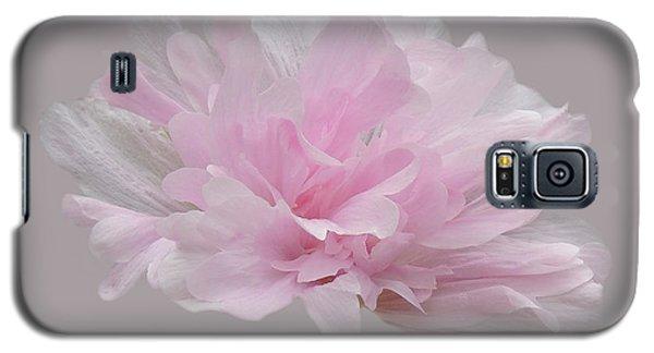Eternity Galaxy S5 Case by Teresa Schomig