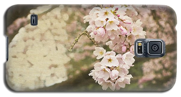 Ethereal Beauty Of Cherry Blossoms Galaxy S5 Case
