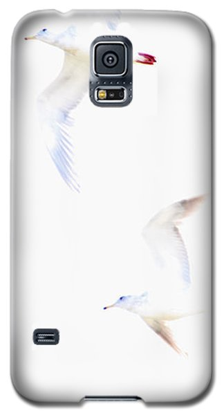 Galaxy S5 Case featuring the photograph Ethereal Gulls by Peggy Collins