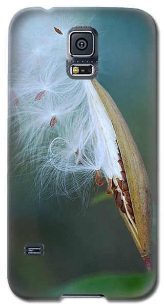 Ethereal Pod 2 Galaxy S5 Case by Fraida Gutovich
