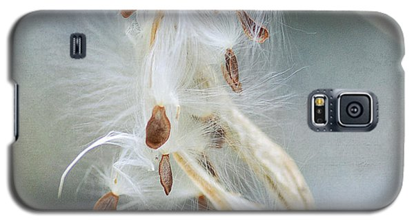 Ethereal Pod 4 Galaxy S5 Case by Fraida Gutovich