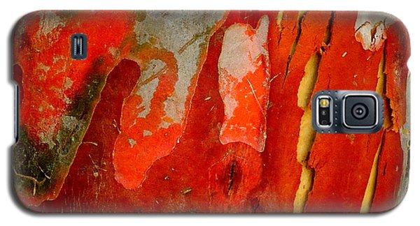 Eucalyptus Bark Galaxy S5 Case
