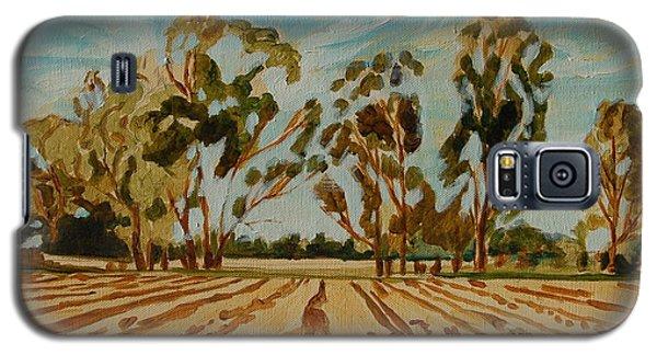 Eucalypus Trees Near Bloemfontein Galaxy S5 Case