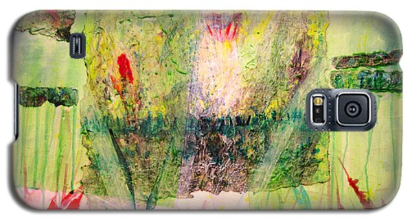 Galaxy S5 Case featuring the painting Euphony by Ron Richard Baviello