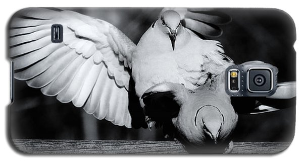 Galaxy S5 Case featuring the photograph Eurasian Collared Doves Announce Spring by Nick  Biemans