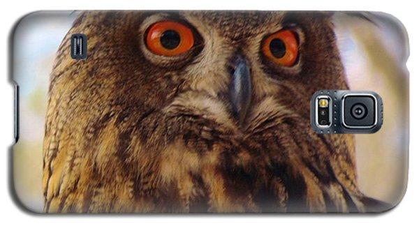 Galaxy S5 Case featuring the photograph Eurasian Eagle Owl by Cynthia Guinn