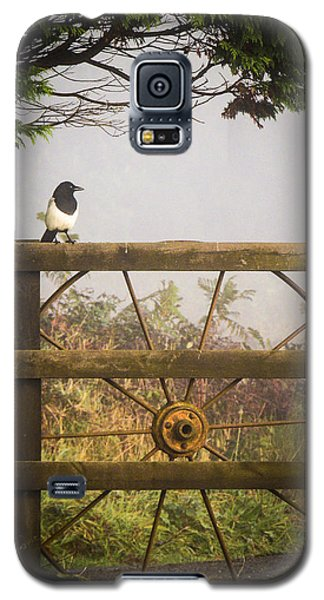 Eurasian Magpie In Morning Mist Galaxy S5 Case