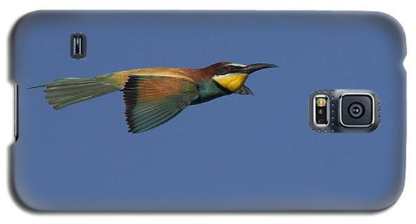 European Bee-eater Galaxy S5 Case