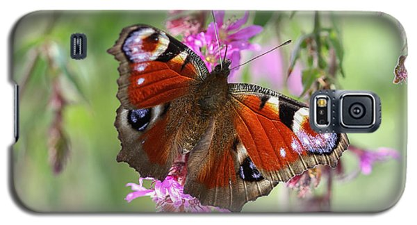 Galaxy S5 Case featuring the photograph European Peacock Butterfly - Nymphalis Io by Jivko Nakev