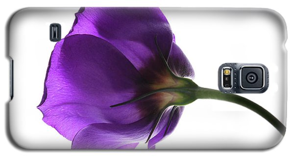 Eustoma Grandiflorum. Galaxy S5 Case by Terence Davis