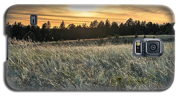 Evening Grasses In The Black Hills Galaxy S5 Case