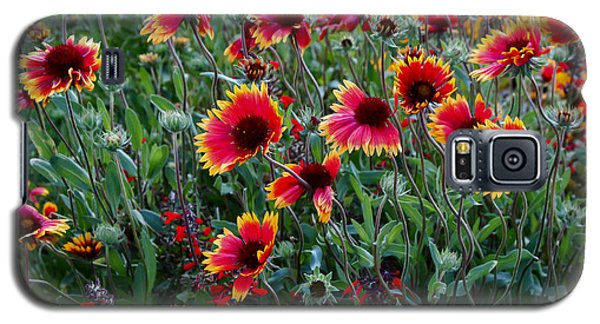 Evening In Bloom Galaxy S5 Case