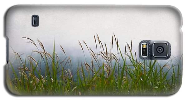 Evening Mist Galaxy S5 Case