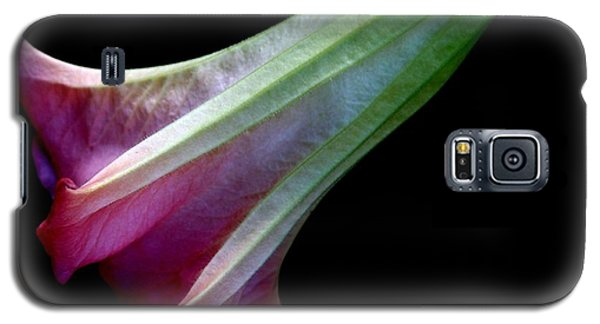 Evening Poetry Galaxy S5 Case by Geri Glavis