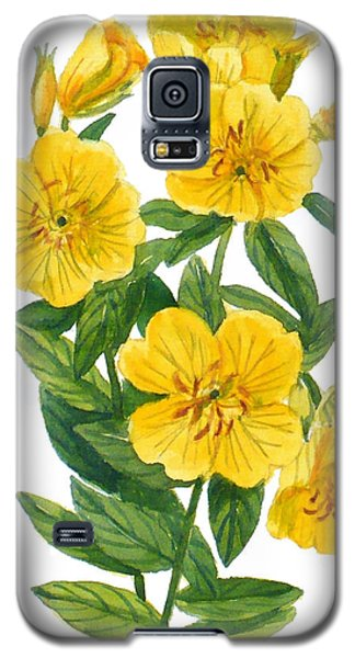 Evening Primrose - Oenothera Fruticosa Galaxy S5 Case
