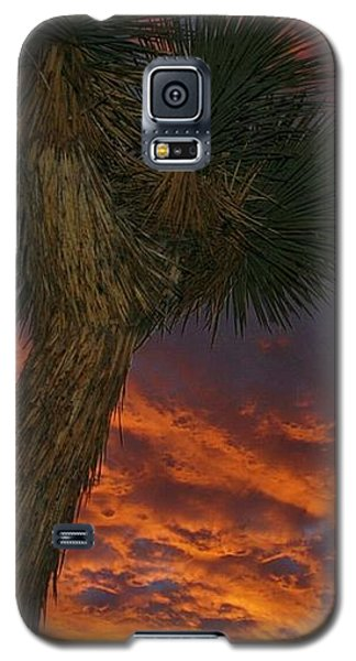 Evening Red Event Galaxy S5 Case