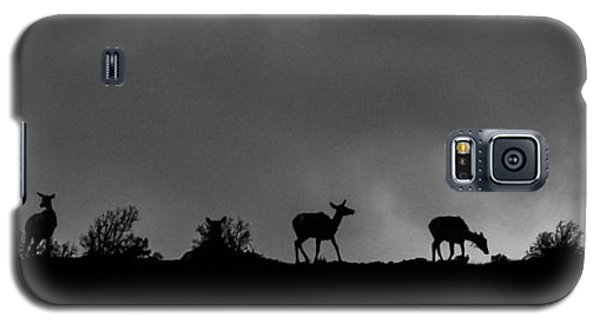 Evening Ridge Galaxy S5 Case
