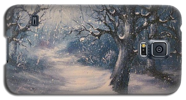 Evening Snow Galaxy S5 Case