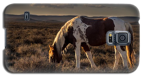 Evening Solitude In Sand Wash Basin Galaxy S5 Case