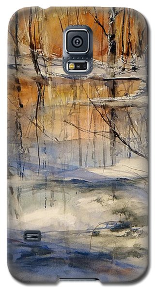 Evening Thaw Galaxy S5 Case
