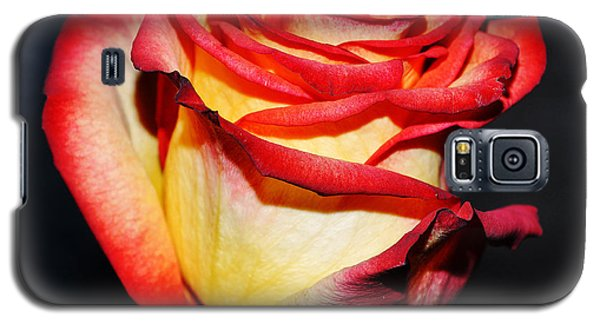 Event Rose 3 Galaxy S5 Case by Felicia Tica