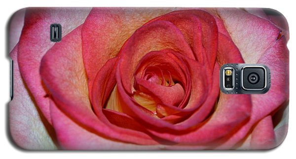 Event Rose Galaxy S5 Case by Felicia Tica