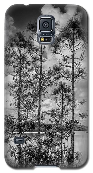 Everglades 0336bw Galaxy S5 Case