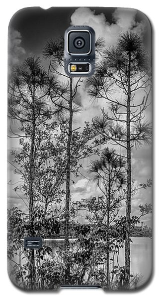 Everglades 0336bw Galaxy S5 Case