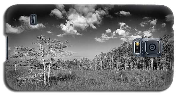 Everglades 9574bw Galaxy S5 Case