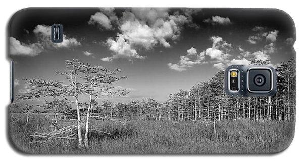Everglades 9574bw Galaxy S5 Case