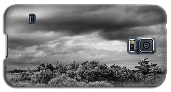 Everglades Storm Bw Galaxy S5 Case