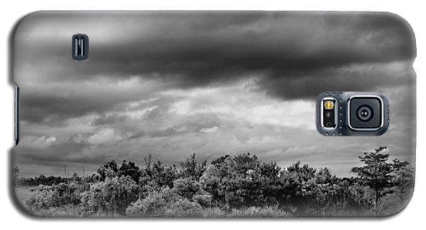 Everglades Storm Bw Galaxy S5 Case