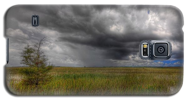 Everglades Storm Galaxy S5 Case