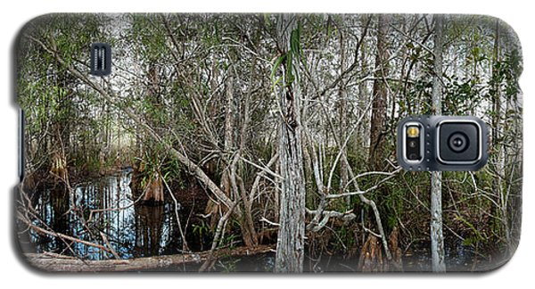 Everglades Swamp-1 Galaxy S5 Case