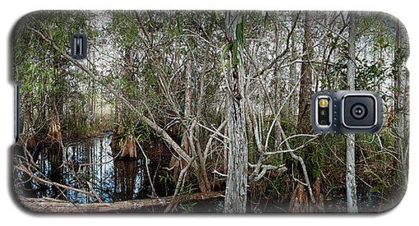 Everglades Swamp-1 Galaxy S5 Case