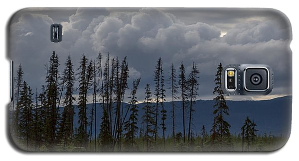 Evergreen Storms Galaxy S5 Case