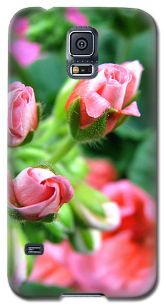 Galaxy S5 Case featuring the photograph Everything's Coming Up Geraniums by Brooks Garten Hauschild