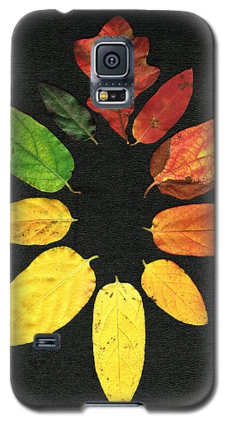 Galaxy S5 Case featuring the digital art Evolution Of Autumn Bk by Pete Trenholm