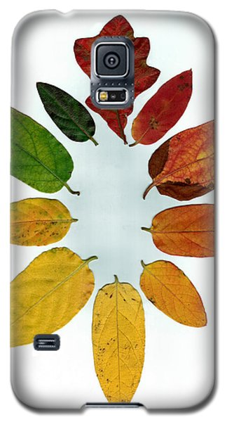 Galaxy S5 Case featuring the digital art Evolution Of Autumn Wh by Pete Trenholm