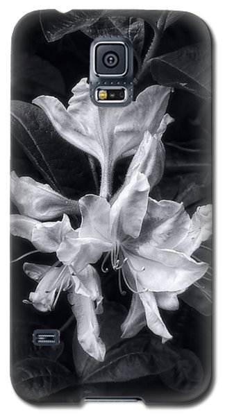 Galaxy S5 Case featuring the photograph Exbury Azalea In Black And White by Louise Kumpf