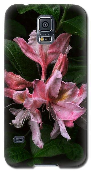 Galaxy S5 Case featuring the photograph Exbury Azalea by Louise Kumpf