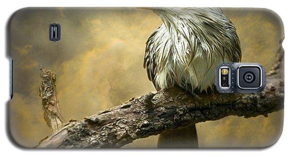 Exotic Bird - Guira Cuckoo Bird Galaxy S5 Case