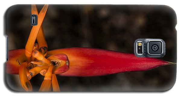 Galaxy S5 Case featuring the photograph Exotic Heliconia by Steven Sparks