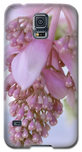 Exotic Malaysian Orchid Galaxy S5 Case