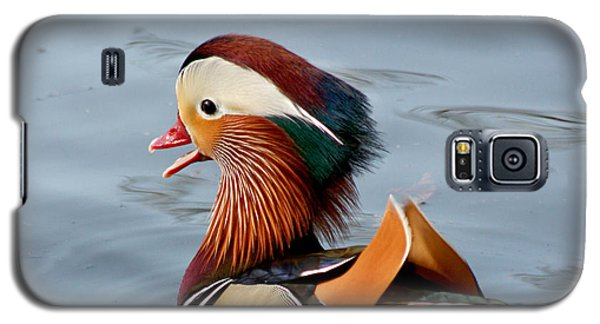 Galaxy S5 Case featuring the photograph Exotic Mandarin Duck by Bob and Jan Shriner
