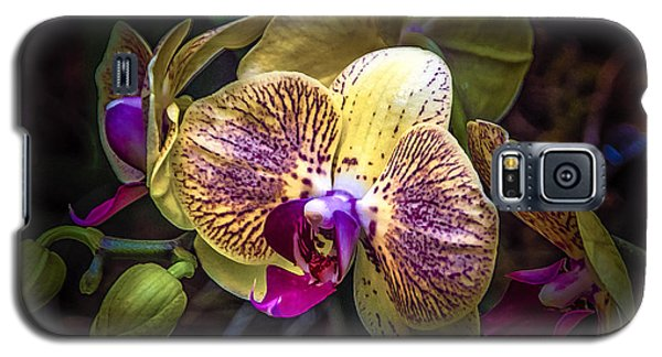 Exotic Orchid Bloom Galaxy S5 Case