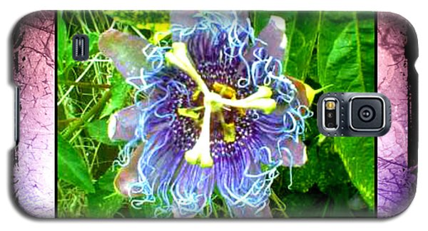Galaxy S5 Case featuring the photograph Exotic Strange Flower by Absinthe Art By Michelle LeAnn Scott